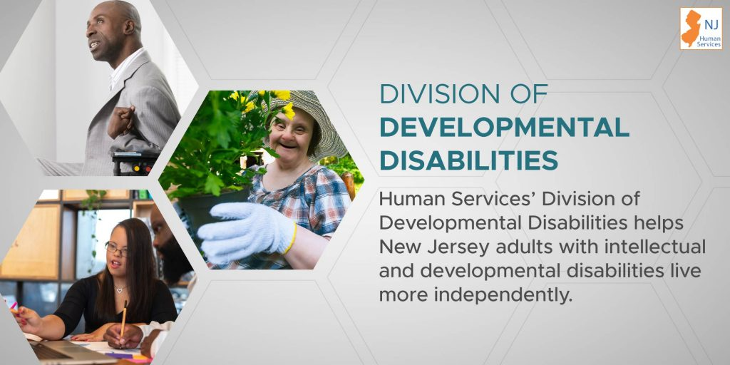 developDisbl2020